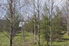 Paisagem com árvores, igreja e construções Foto de Stock