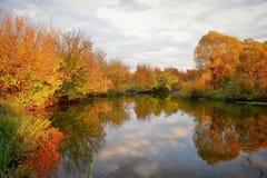 Paisagem com as árvores coloridas do outono refletidas dentro imagens de stock royalty free
