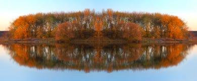 Paisagem com as árvores que refletem em um lago Imagens de Stock