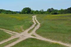 Paisagem com as estradas rurais no prado Fotografia de Stock