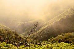 Paisagem com as montanhas cobertas com as nuvens Fotos de Stock Royalty Free