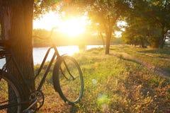 Paisagem com bicicleta Foto de Stock