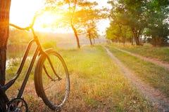 Paisagem com bicicleta Fotos de Stock