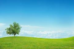 Paisagem com céu azul Imagem de Stock Royalty Free