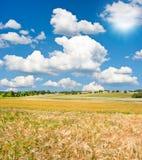 Paisagem com campo de trigo e o céu azul Fotos de Stock Royalty Free