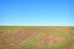 Paisagem com campo e céu Imagem de Stock
