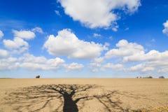 Paisagem com cloudscape e sombras bonitos Fotografia de Stock