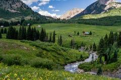 Paisagem com crista e wildflowers da montanha de Colorado do montículo fotos de stock