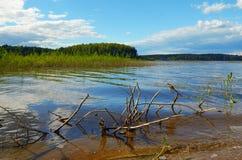Paisagem com dia de verão do lago foto de stock royalty free