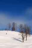 Paisagem com estação do inverno Fotos de Stock Royalty Free