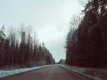 Paisagem com estrada asfaltada e floresta Foto de Stock Royalty Free