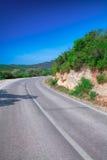 Paisagem com estrada e as árvores vazias Fotografia de Stock