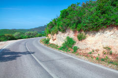 Paisagem com estrada e as árvores vazias Fotos de Stock Royalty Free