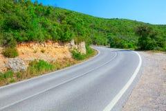 Paisagem com estrada e as árvores vazias Foto de Stock