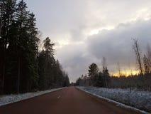 Paisagem com estrada e floresta no inverno Fotografia de Stock