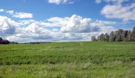 Paisagem com estrada rural através de um campo Imagens de Stock Royalty Free
