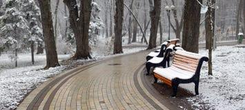 Paisagem com flocos de neve de queda - banco do inverno coberto com o sn fotos de stock