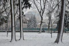 Paisagem com flocos de neve de queda - banco do inverno coberto com o sn fotografia de stock royalty free