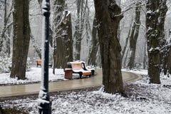 Paisagem com flocos de neve de queda - banco do inverno coberto com o sn fotos de stock royalty free