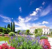 Paisagem com flores coloridas e o céu azul Fotografia de Stock Royalty Free