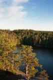 Paisagem com a floresta em Carélia, Rússia Imagens de Stock