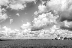 Paisagem com grama verde e moinho de vento Imagem de Stock