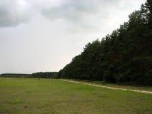 Paisagem com grama verde, estrada Imagem de Stock