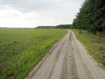 Paisagem com grama verde, estrada Fotos de Stock Royalty Free