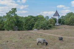 Paisagem com a igreja em Hovgarden na Suécia Fotos de Stock