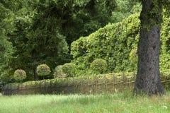 Paisagem com jardim Fotos de Stock Royalty Free