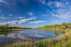 Paisagem com lago Foto de Stock Royalty Free