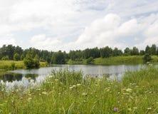 Paisagem com lago Fotografia de Stock Royalty Free