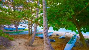 Paisagem com lago e árvores || barco na praia 2019 fotografia de stock royalty free