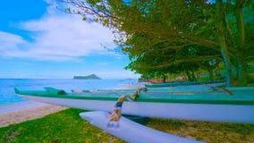 Paisagem com lago e árvores || barco na praia 2019 foto de stock royalty free