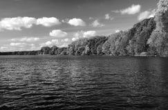 Paisagem com lago e floresta Fotografia de Stock Royalty Free