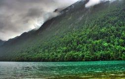 Paisagem com lago e floresta Imagens de Stock Royalty Free