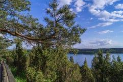 Paisagem com lago e floresta de Lietuva Foto de Stock Royalty Free