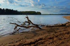 Paisagem com lago e ramo de árvore seco imagens de stock