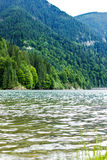 Paisagem com lago Galbenu em Romênia Imagens de Stock Royalty Free