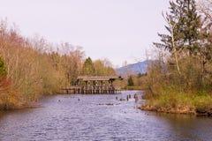 Paisagem com montanhas e lago Fotos de Stock Royalty Free