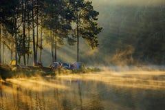 Paisagem com névoa Fotografia de Stock