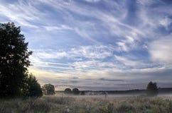 Paisagem com a névoa da manhã imagens de stock