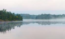 Paisagem com névoa da manhã Fotos de Stock