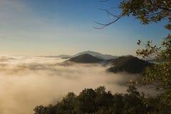 Paisagem com névoa na manhã Fotografia de Stock