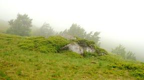 Paisagem com névoa nas montanhas Imagens de Stock