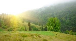Paisagem com névoa nas montanhas Imagem de Stock Royalty Free