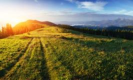 Paisagem com névoa nas montanhas no por do sol Imagens de Stock Royalty Free