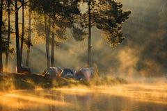 Paisagem com névoa no lago Imagens de Stock Royalty Free