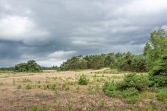 Paisagem com nuvens de ameaça Foto de Stock Royalty Free