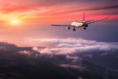 A paisagem com o avião branco grande do passageiro está voando fotografia de stock royalty free